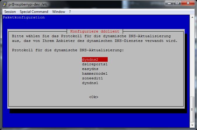 ddclient - install(3) - Aktualisierungsprotokollauswahl