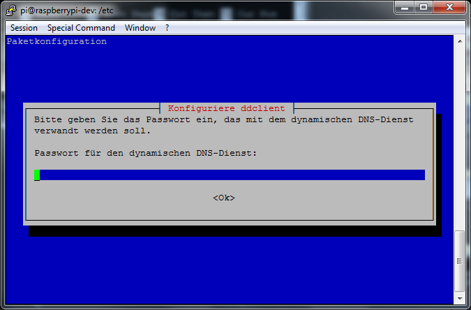 ddclient - install(5) - Passwort
