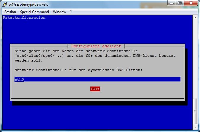 ddclient - install(6) - Netzwerkschnitstelle