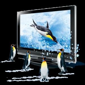 Linux Pinguins image